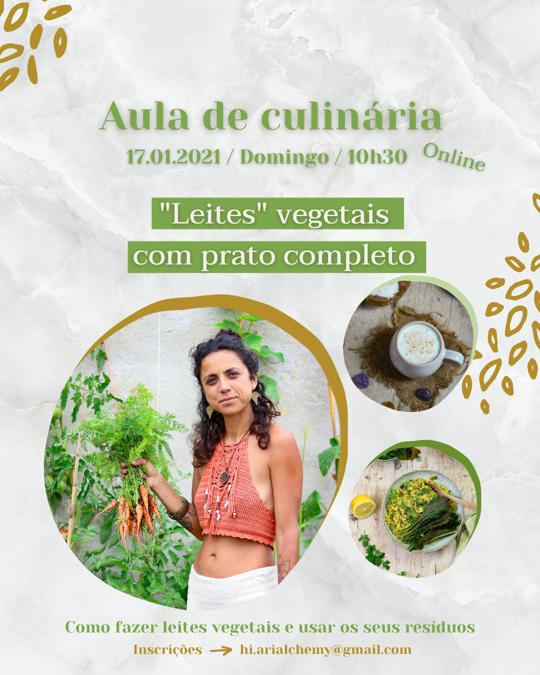 Flyer.leites vegetais.com.prato.completo-540x675
