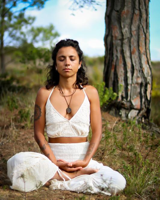 11Element 2Ari meditate-532x666